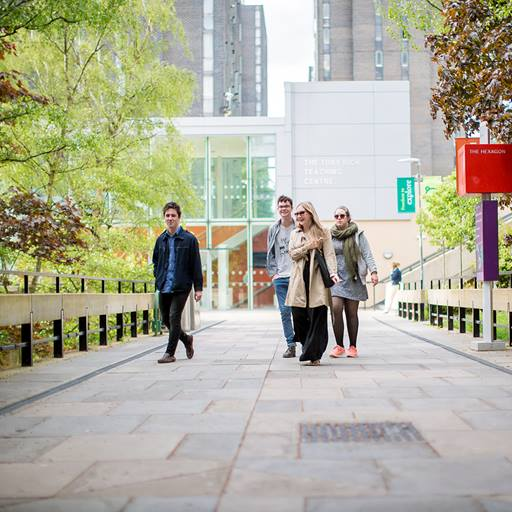 Mixed group of four students walking along a pathway from the Tony Rich Teaching Centre towards the Hex.