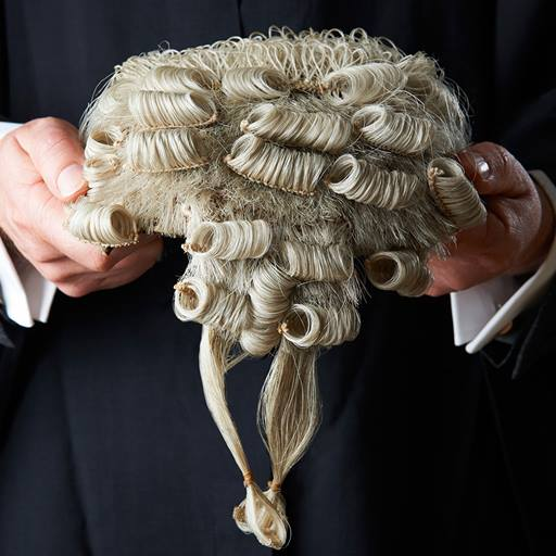 Lawyer holding a lawyer's wig with both hands