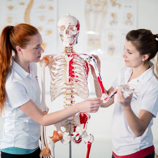 Two women with a model of a human skeleton