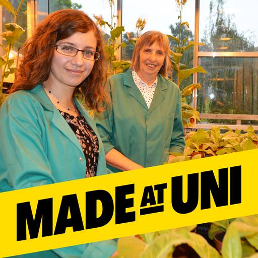 Essex research featured in Made at Uni campaign