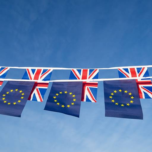 British and European flags
