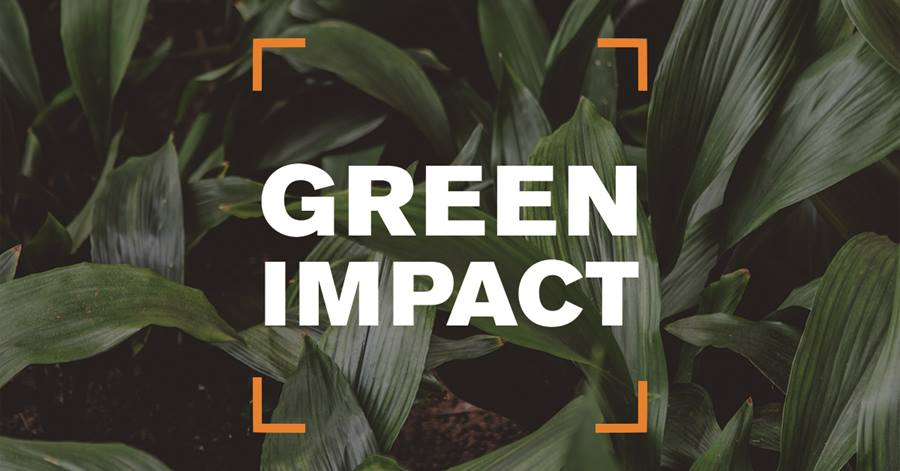 Green Impact Launch: Colchester