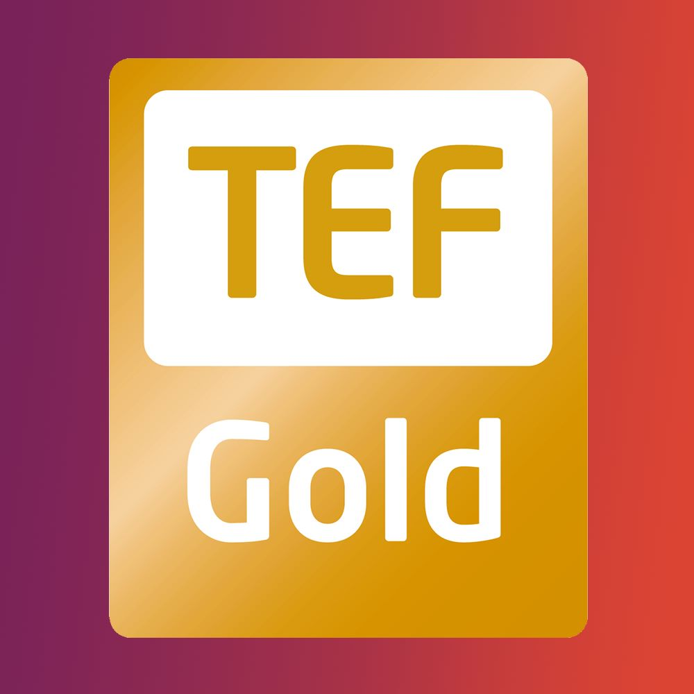 Teaching Excellence and Student Outcomes Framework (TEF) logo