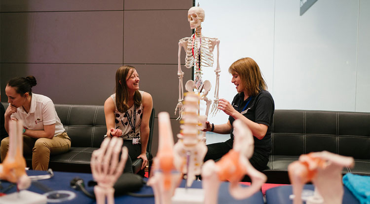 A student speaking with a member of staff from Physiotherapy, with a skeleton and other false limbs present to examine