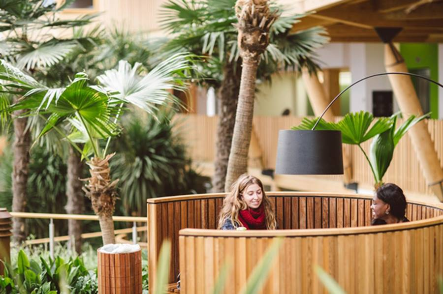 Our stunning winter garden gives our zero carbon business school building its own micro-climate. More than one tonne of carbon is saved per day through energy efficient design and low carbon technologies.